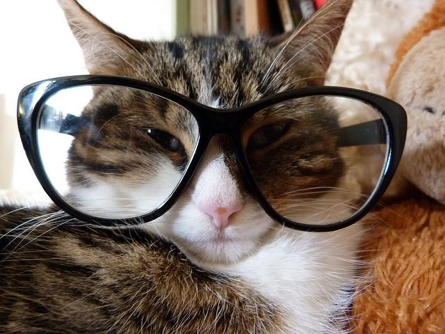 Otsige prillid välja, läheb lugemiseks.